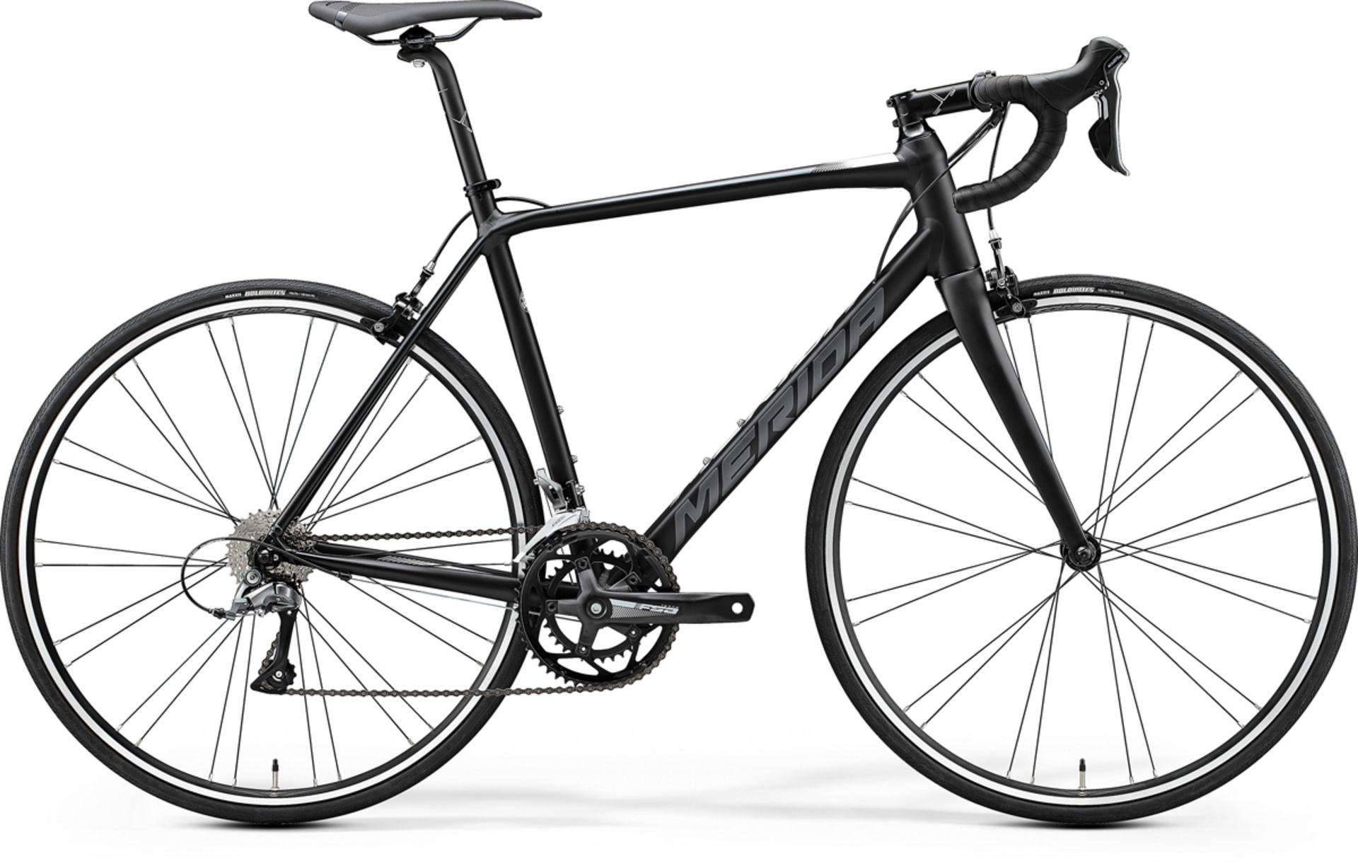 best road bike, entry level road bike, best looking road bike, bicycle, scultura, merida road bike, shimano, bike exchange, bike review